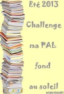 CHALLENGE - Faire fondre la PAL
